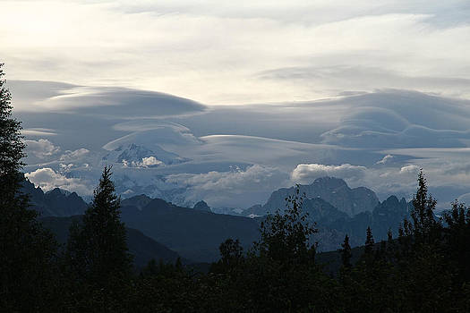 Denali Evening by Donna Quante
