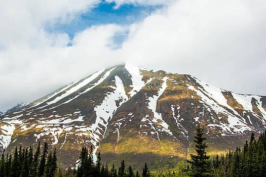 Denali Mountain by Shey Stitt