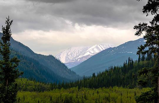Denali National Park Storm by Shey Stitt