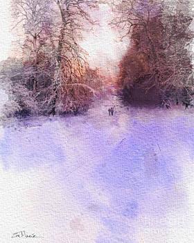 Denmark Winter Walk by Eva Macie