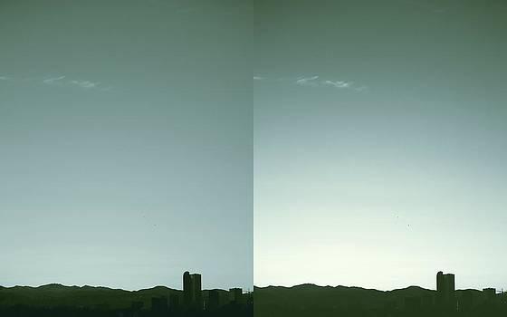 Denver Silhouette by Augustina Trejo