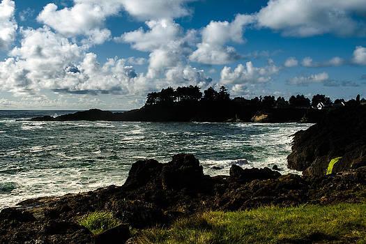 Depoe Bay by Blanca Braun