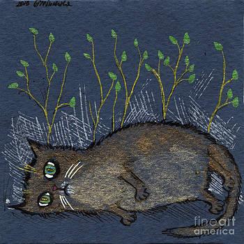 Angel  Tarantella - depressed cat