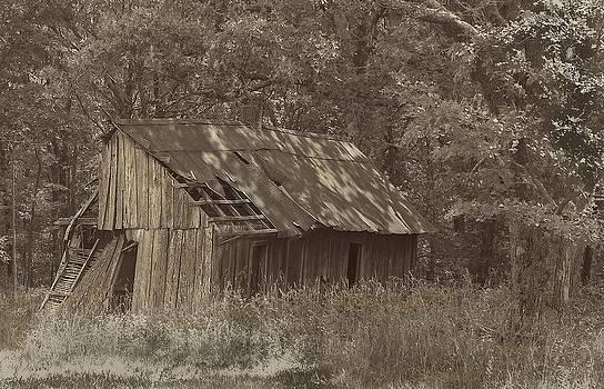 Depression Farmhouse by Larry Bodinson