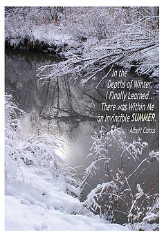 Depths of Winter Invincible Summer by Shawn Shea