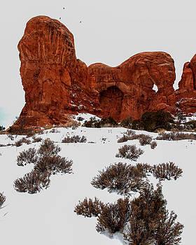 John McArthur - Desert Butte