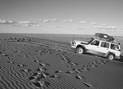 Desert Conquerer by Carl Koenig