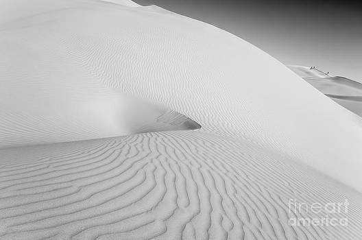 Desert Dunes by Jennifer Magallon