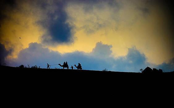 Desert evening by Amit Rawal