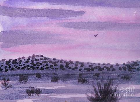 Desert Evening by Suzanne McKay