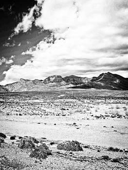 Desert Floor by  Garwerks  Photography