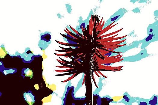 Desert Flower Art by Mari Cody
