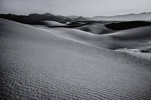 Gene Garnace - Desert Forms