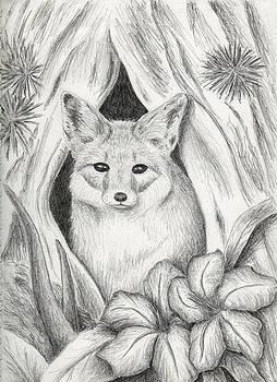 Jeanette K - Desert Fox