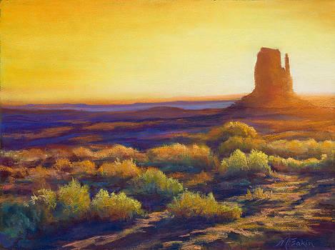 Desert Morning by Marjie Eakin-Petty