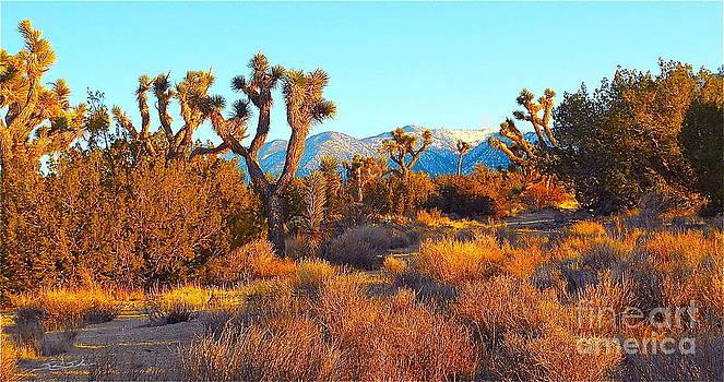 Desert Mountain by Gem S Visionary