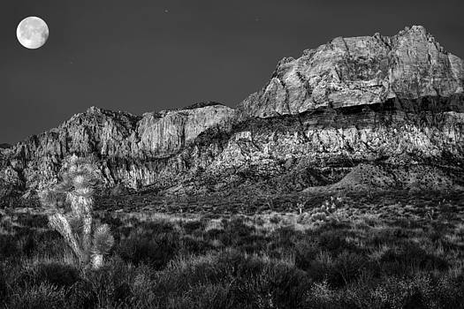 Desert mountains on a night of the full moon by Kim M Smith