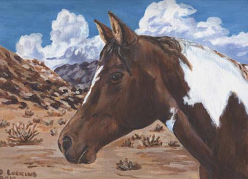 Desert Paint by Darlene Luckins