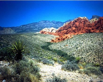 Desert Pass by Jennifer Ott