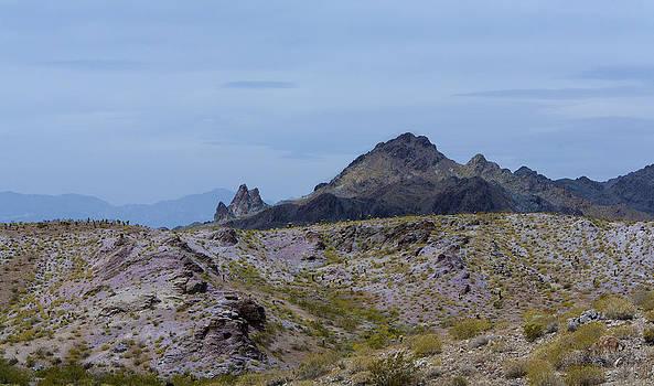 Desert Landscape by Gilbert Artiaga
