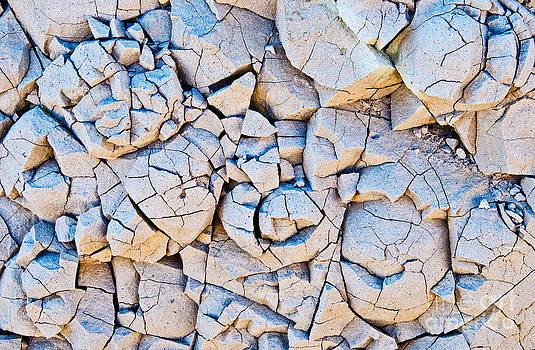 Mae Wertz - Desert Rose Formations