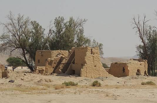 Desert Ruins by Heather Gordon