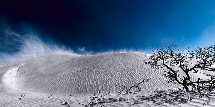 Desert Sandstorm by Julian Cook