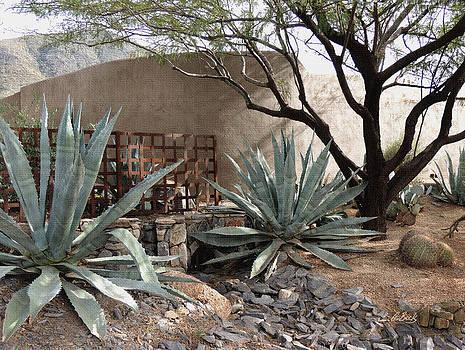 Desert Shade by Gordon Beck