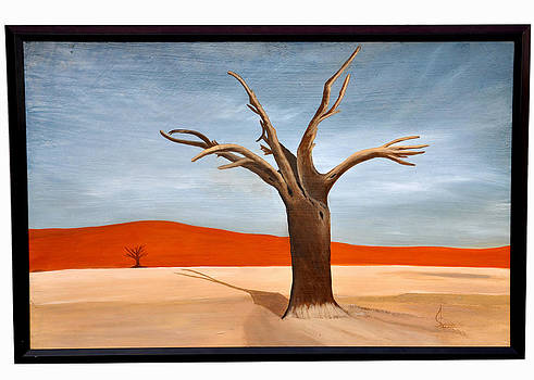 Desert by Shazia Saeed