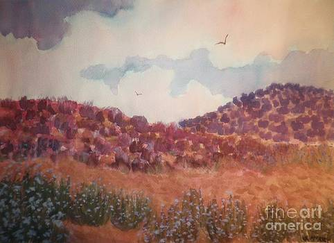 Desert Solace by Suzanne McKay