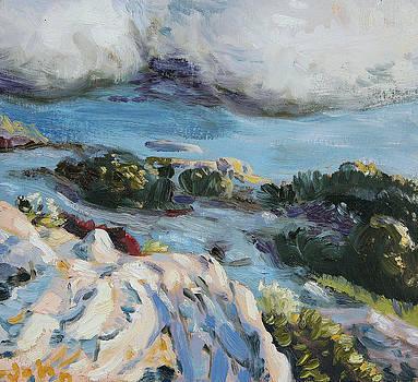 Desert Squall by John Matthew