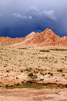 James Brunker - Desert Storm 1