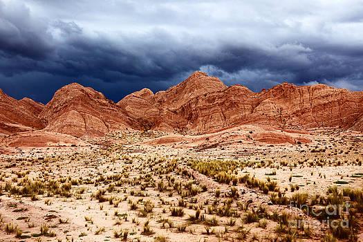James Brunker - Desert Storm 3