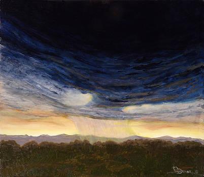 Desert Storm by Joyce Blank
