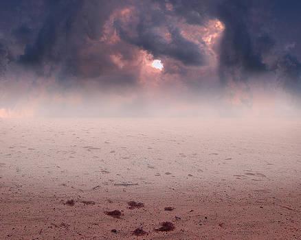 Desert Sunset by Cheryl Heffner