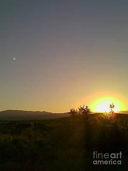 Fred Wilson - Desert Sunset