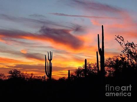 Desert Sunset by Joseph Baril