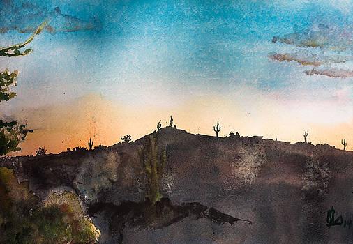 Desert Sunset by Lee Stockwell