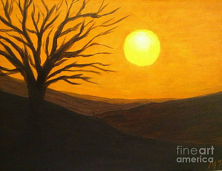 Desert Sunset by Michelle Treanor