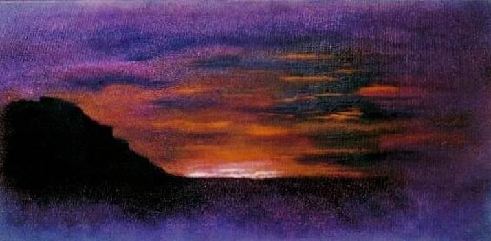 Desert sunset by Valorie Cross