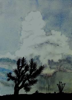 Desert Thunder Storm by Deane Locke