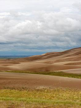 Desert View by Sue  Thomson