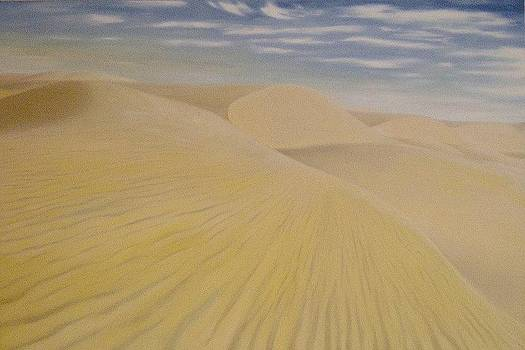 Desert by Wagner Chaves