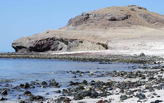 Ramunas Bruzas - Deserted Beach