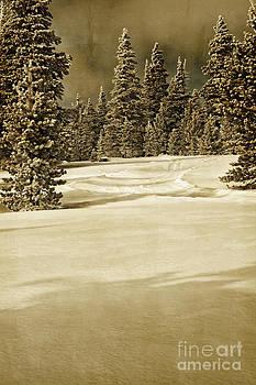 Deserted Scene by Susan Gary