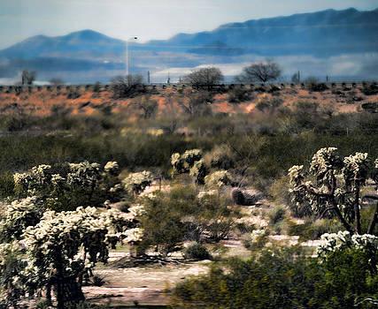 Joe Bledsoe - Desertscape Vertical