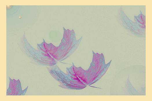 Joe Connors - DESIGN SPIN 37