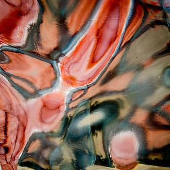 Designs in Glass by Jim DeLillo
