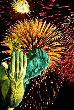 Dennis Cox - Detroit fireworks