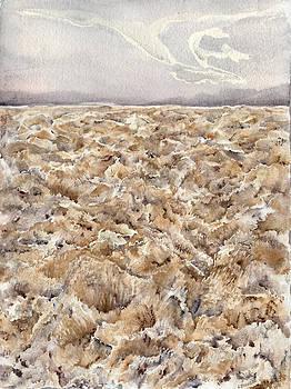 Devils Golf Salt Crystals by Lynne Bolwell